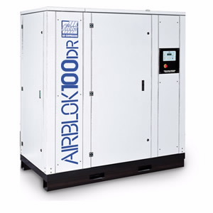 Werther Air Compressor Airblok 100 DR